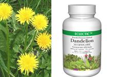 �����襦����ݥݡʥ���ǥ饤�����Dandelion
