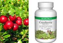 クランベリー(ツルコケモモ)Cranberry