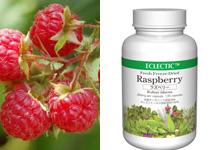 ラズベリー(キイチゴ)Rasberry